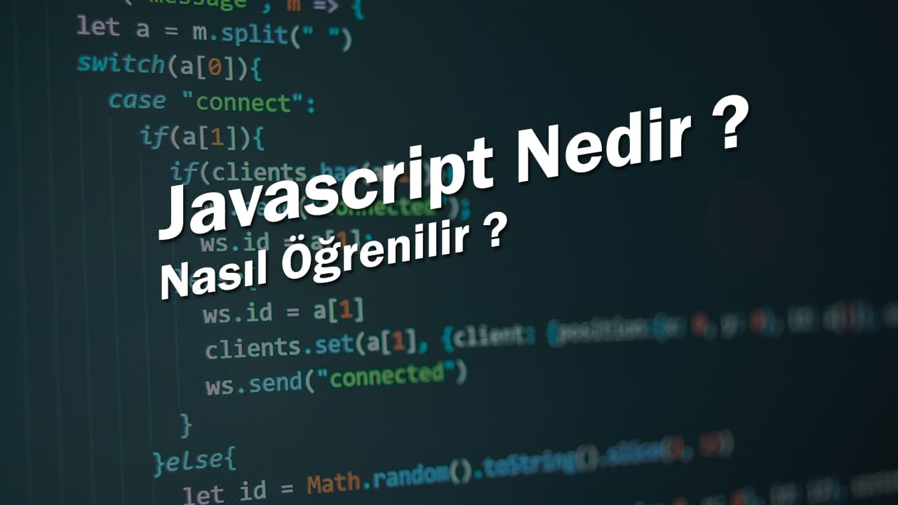 Javascript Nedir ?